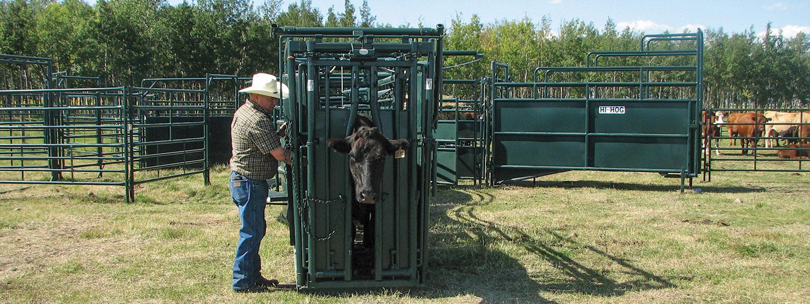 Hi-Hog Farm & Ranch Equipment » Hi-Hog