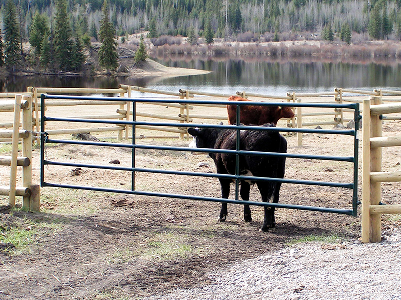 Hi Hog Livestock Panels and Gates