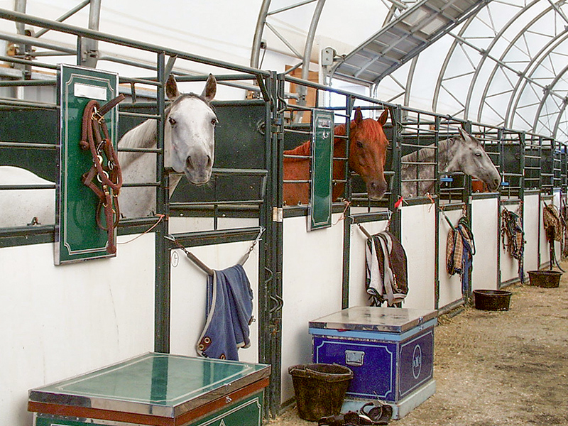 Hi Hog Portable Event Horse Stalls